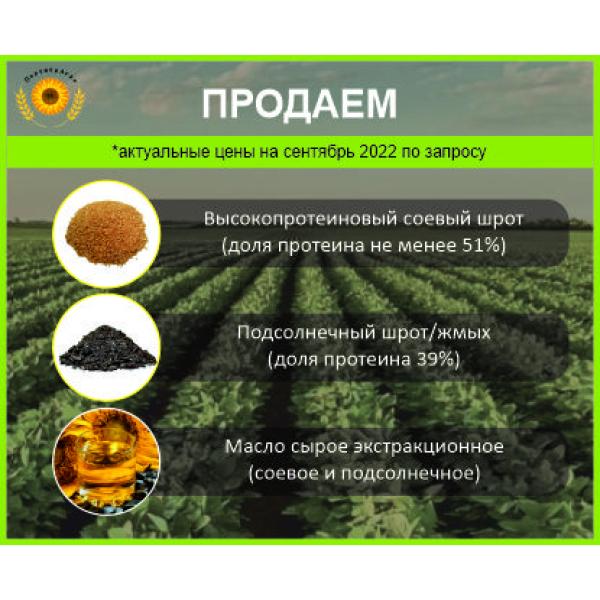 Шрот соевый от производителя (протеин на АСВ не менее 46%)