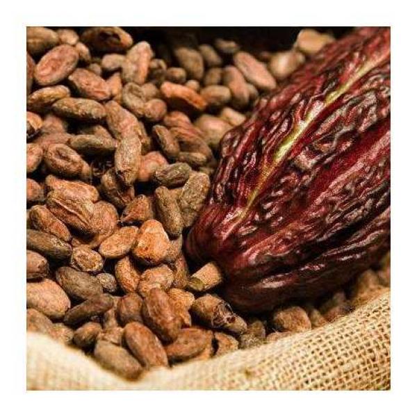 Какао зерно Тринитарио