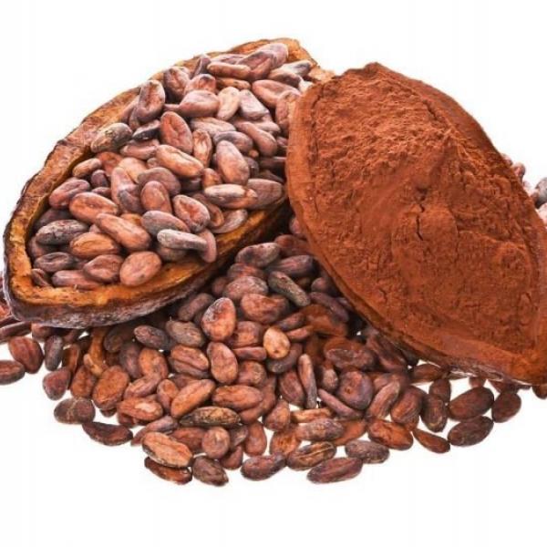 Какао Форастеро
