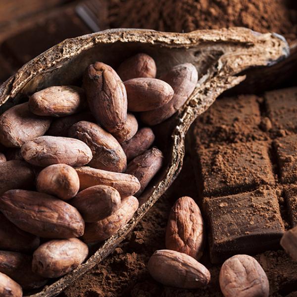 Зерно какао бобы
