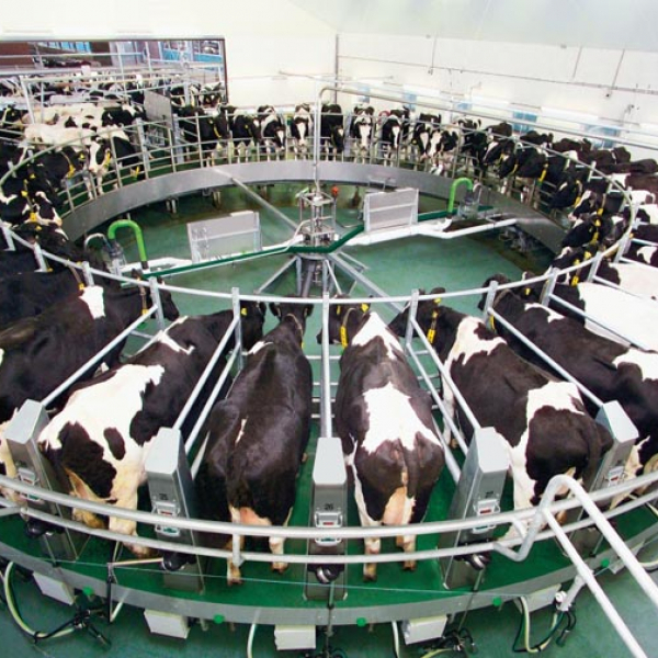 Современное оборудование для животноводства