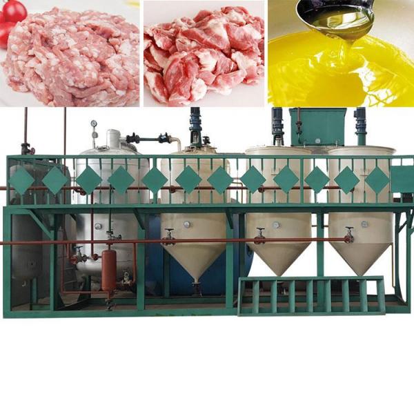 Оборудование для вытопки, плавления и переработки животного жира сыца, сала для производства пищевого, технического и кормового животного жира