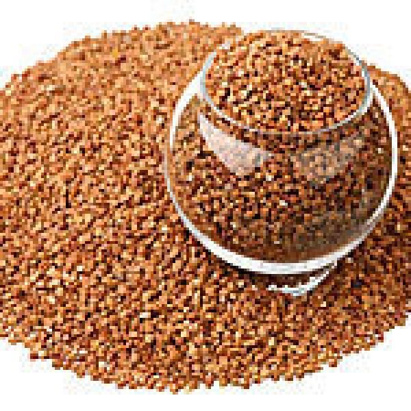 Сорго зерновое
