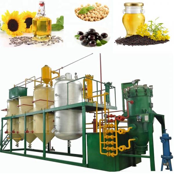 Оборудование для производства, рафинации и экстракции растительного, подсолнечного, рапсового, хлопкового и соевого масла
