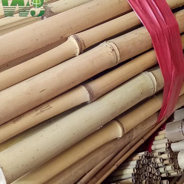 Лесоматериалы из бамбука