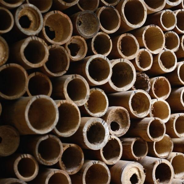 Натуральное бревно из бамбука