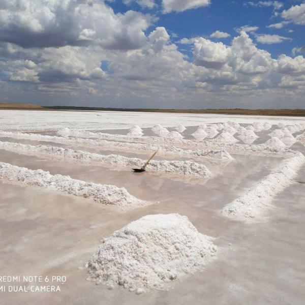 Соль озерная для технической цели с карьера