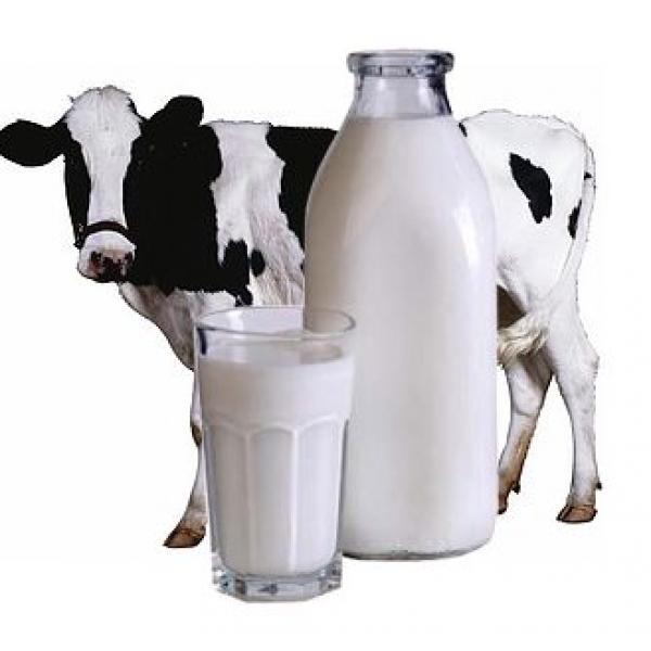 Катик (кислое молоко, кефир) из коровьего молока жирностью 2.5% фасовано в ПЭТ упаковку
