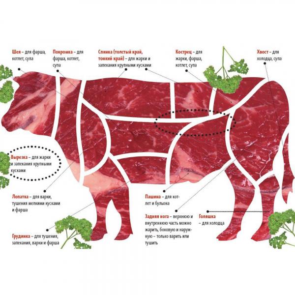 Мясо крупно рогатого скота